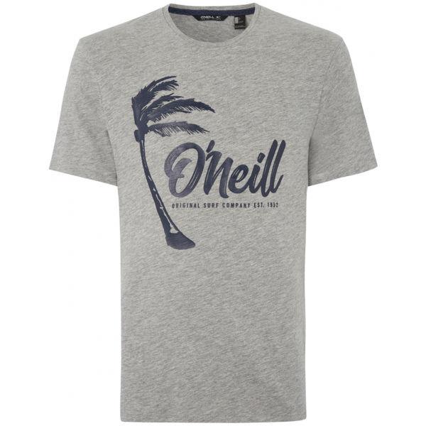 O'Neill LM PALM GRAPHIC T-SHIRT šedá L - Pánske tričko