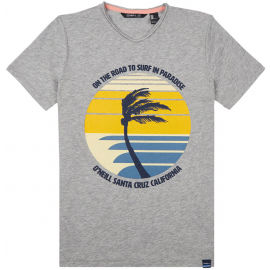 O'Neill LB PALM PRINT T-SHIRT - Chlapčenské tričko