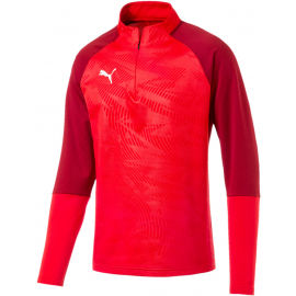 Puma CUP TRAINING 1 4 ZIP T - Мъжки суитшърт