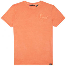 O'Neill LB CARTER WASHED T-SHIRT