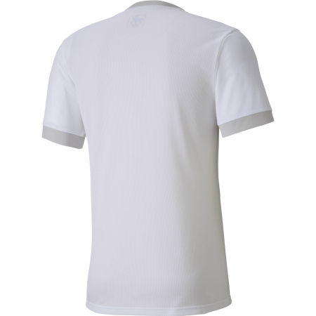 Men's sports T-Shirt - Puma TEAM GOAL 23 - 2