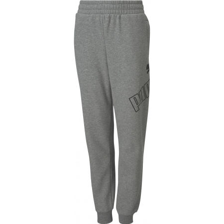 Puma BIG LOGO SWEAT PANTS FL CL B - Spodnie dresowe