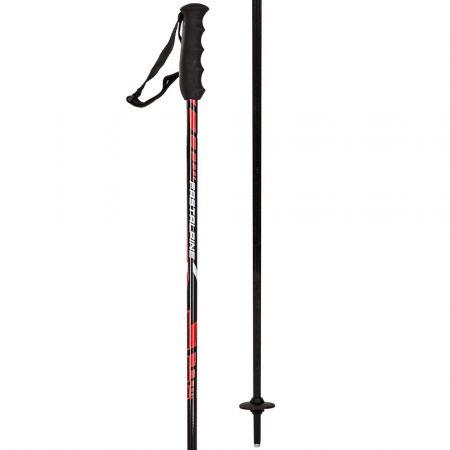 Birki FAST ALU 16 - Alpine Ski Poles