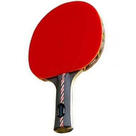 Stiga PROPUS - Table tennis bat