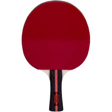 Tregare DEAN - Table tennis bat