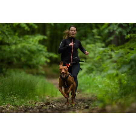 Szelki dla psa - NON STOP DOG WEAR FREEMOTION HARNESS - 3