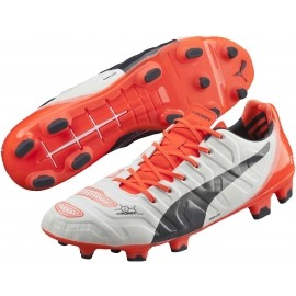 Puma EVO POWER 1.2 FG