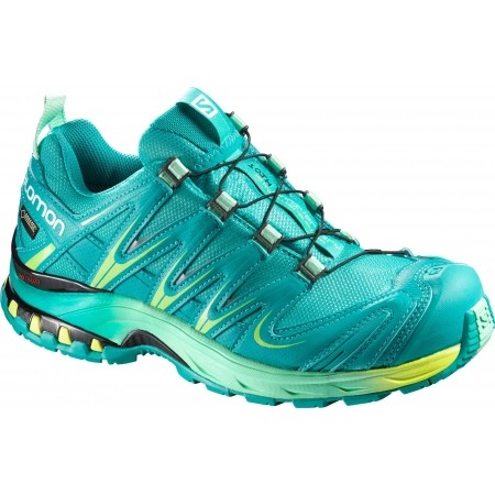 Salomon XA PRO 3D GTX LTD EDITION W | sportisimo.pl