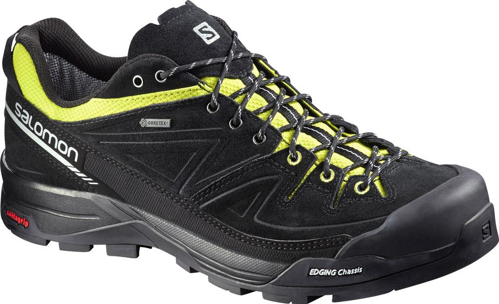 Salomon X ALP LTR GTX. Pánská obuv na vysokohorskou turistiku cee11527a76