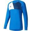 Pánsky futbalový dres - adidas ASSITA 17 GK - 1