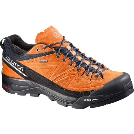 Pánská obuv na vysokohorskou turistiku - Salomon X ALP LTR GTX 36fb8fc87b5