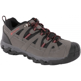 ALPINE PRO LEOKAD - Men's trekking shoes