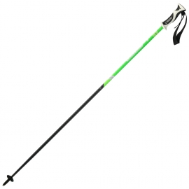 Elan HOTROD F.GREEN - Downhill ski poles