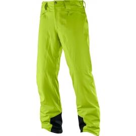 Salomon ICEMANIA PANT M - Мъжки зимни панталони