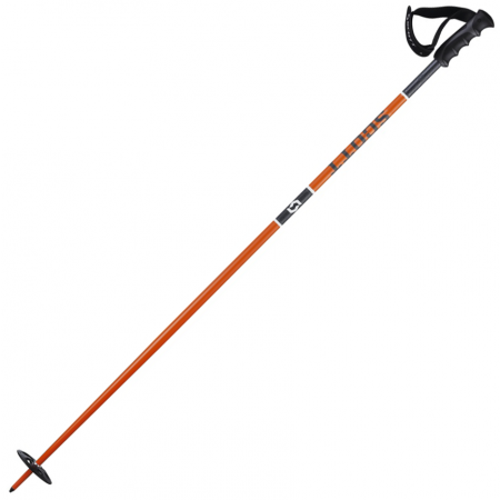 Bețe ski coborâre - Scott TEAM ISSUE - 2