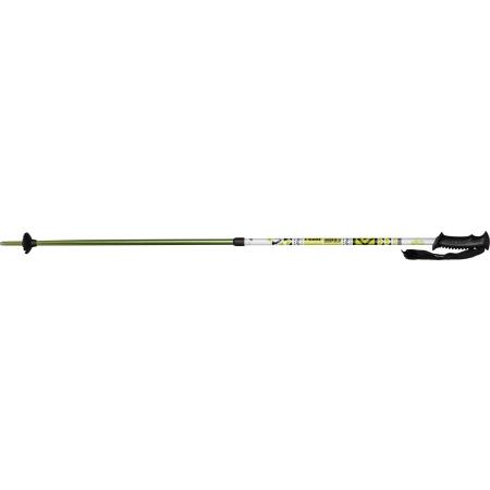 Children's downhill ski poles - Arcore JSP 3.1 - 4
