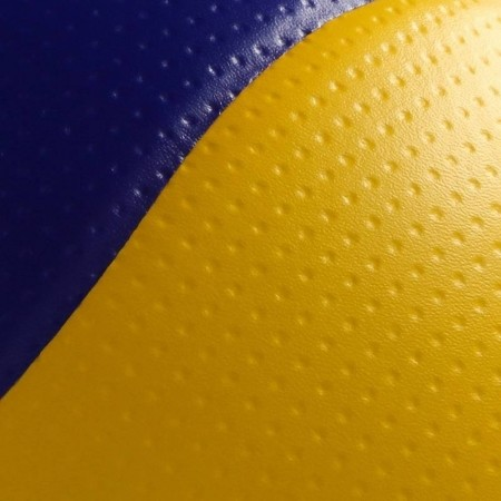 Volejbalový míč - Mikasa MVA 200 - 5