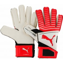 Puma ONE GRIP 17.2 IC - Football goalkeeper gloves