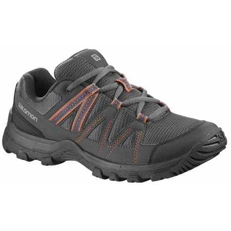 Salomon DEEPSTONE W - Women's trekking shoes