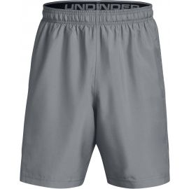 Under Armour WOVEN GRAPHIC SHORT - Men's shorts