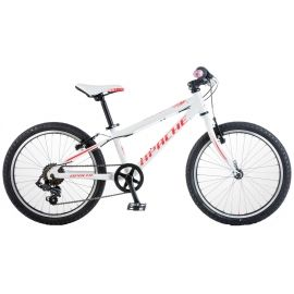 Apache 20 BEETLE - Kids' mountain bike