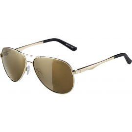 Alpina Sports A 107 - Unisex sluneční brýle