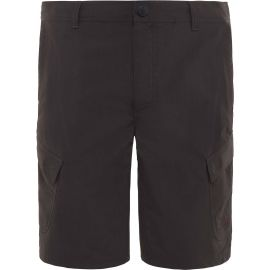 The North Face HORIZON SHORT M - Men's shorts