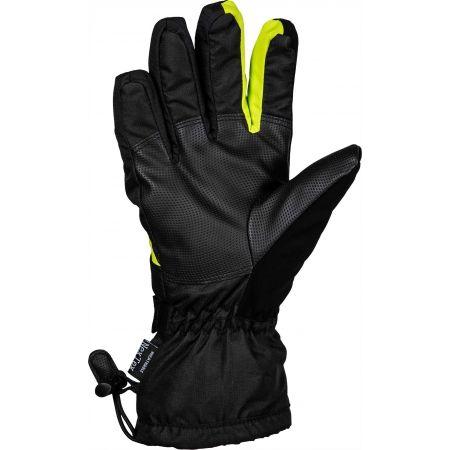 Mănuși ski bărbați - Willard EWEN - 2