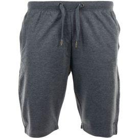 ALPINE PRO PANFIL 2 - Pánské šortky