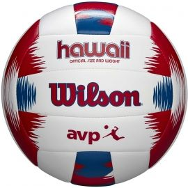 Wilson AVP HAWAII VBALL - Volleyball