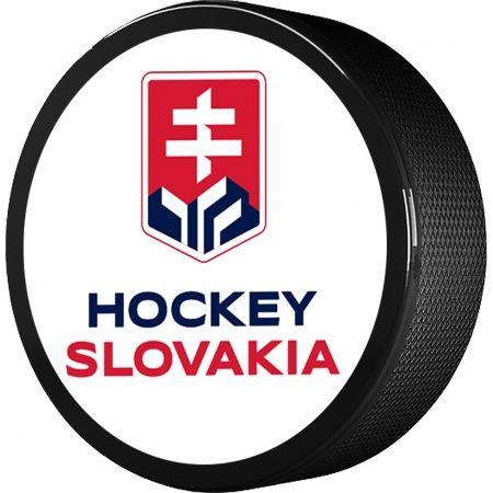 Střída DWUSTRONNY SKRZYŻOWANE KIJE HOKEJOWE SVK - Krążek hokejowy