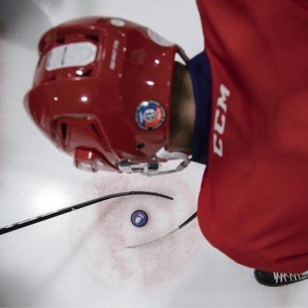 Hokejový puk - Střída LOGO LEV PODKLAD CIHT - 4