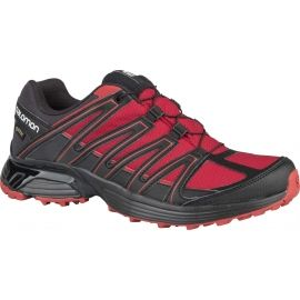 Salomon XT ASAMA GTX - Men's multifunctional shoes