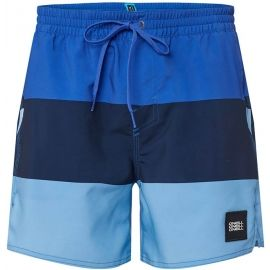 O'Neill PM VERT-HORIZON SHORTS - Pánské šortky do vody