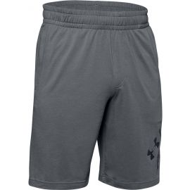 Under Armour SPORTSTYLE COTTON WORDMARK LOGO SHORT - Pánske šortky
