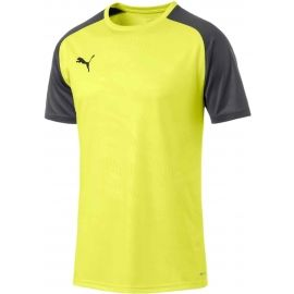 Puma CUP TRAINING JERSEY CORE - Men's football jersey