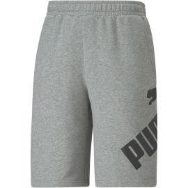 Puma BIG LOGO SHORTS 10 - Pánske športové šortky