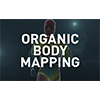 ORGANIC BODY MAPPING
